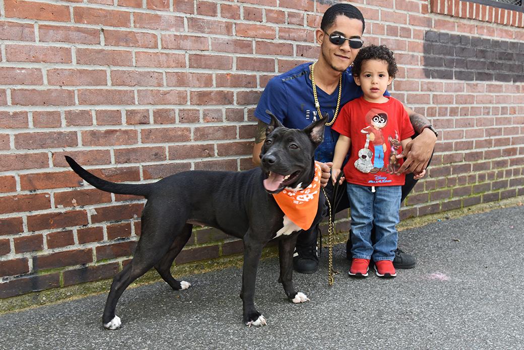 Koko, Anthony, and his child