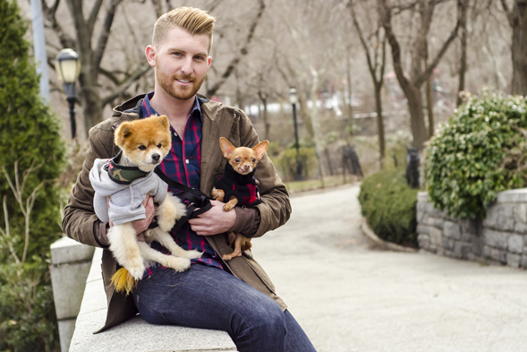 Young man holding a pomeranian and chihuahua