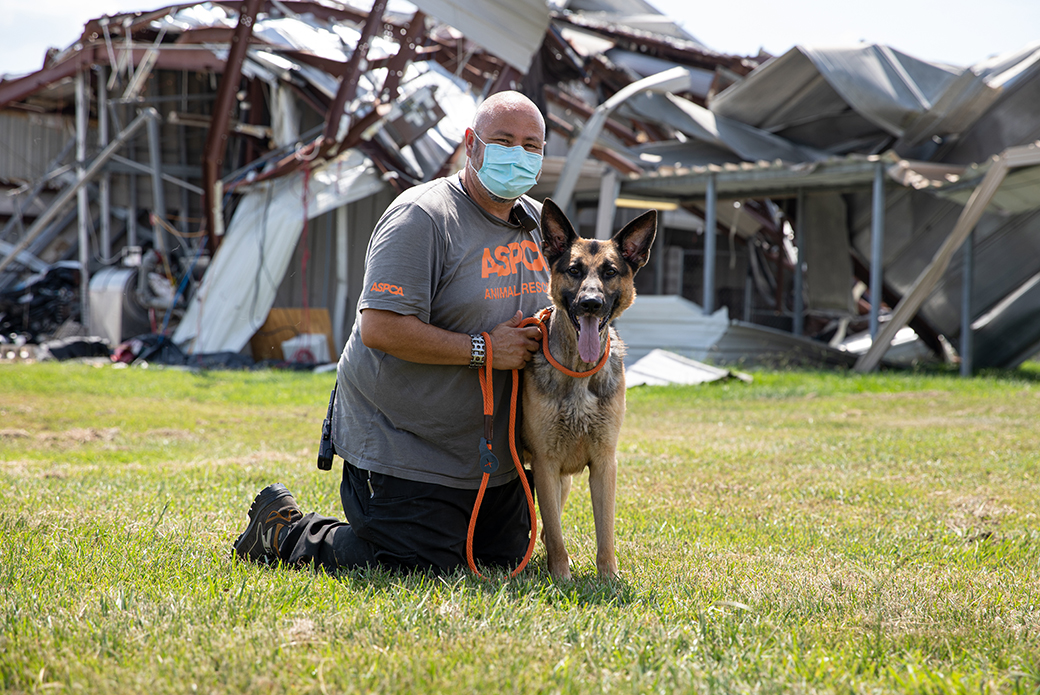Man with dog in front of wrecked houses