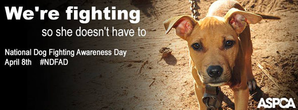 National Dog Fighting Awareness Day Facebook Cover