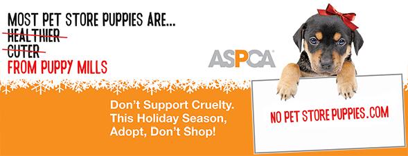 No Pet Store Puppies Billboard
