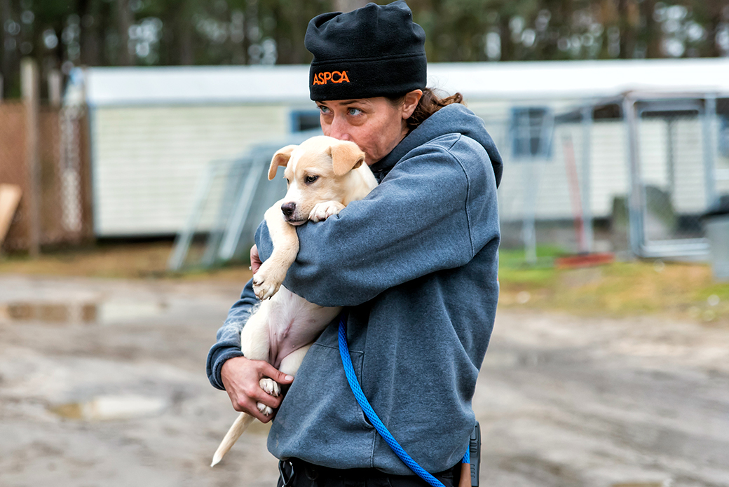 FIR team member carrying puppy