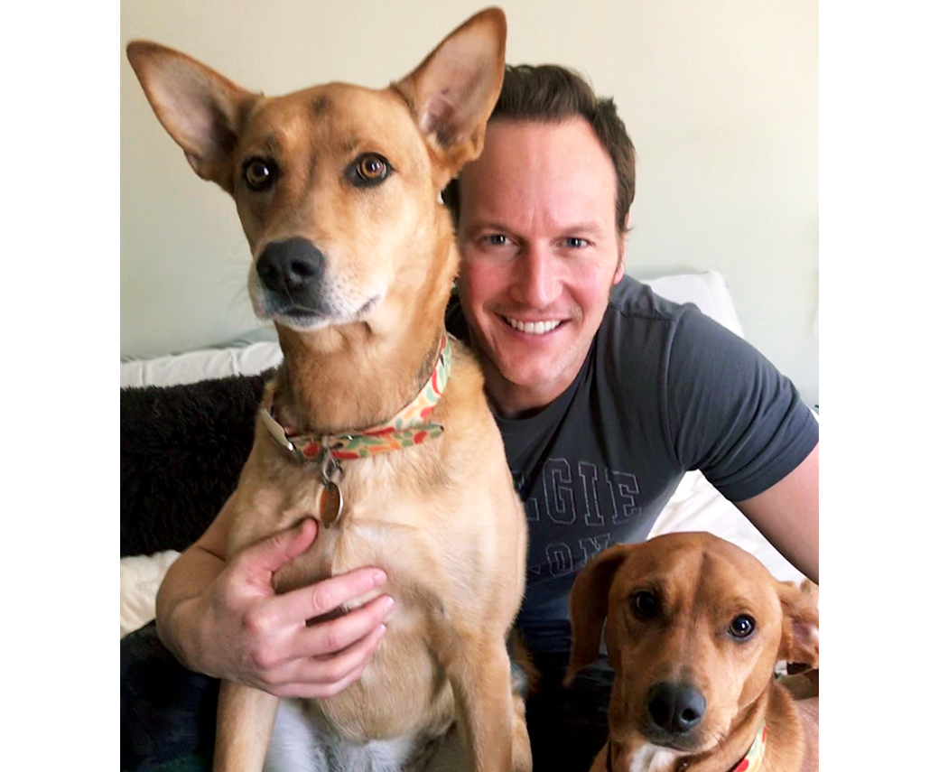 Patrick Wilson and his dogs