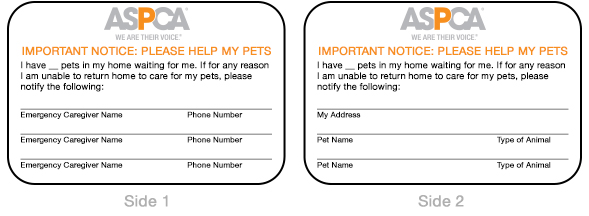 step 2 create a pet dossier for each pet in your care