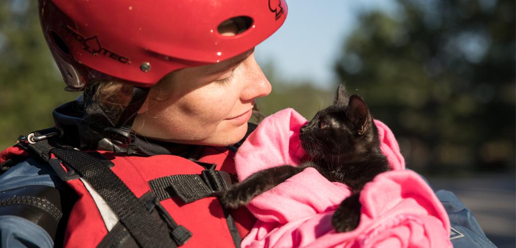 Woman saving cat