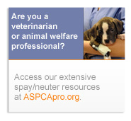 Are you a vet or animal welfare professional?