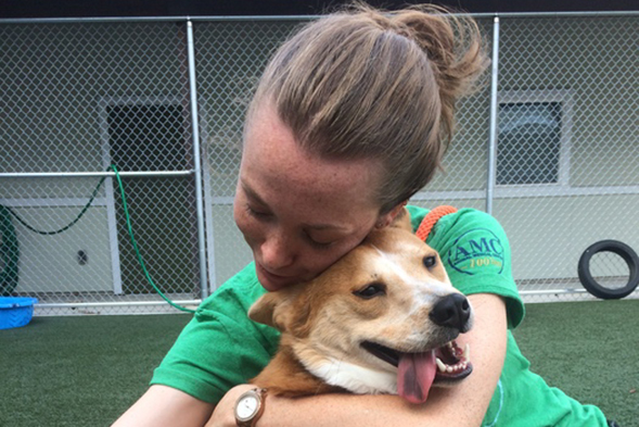 Dog getting a hug from worker at ASPCA Behavioral Rehabilitation Center