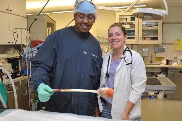 Marcus Graham, ASPCA senior animal care technician with veterinarian Dr. Yvonne Kline