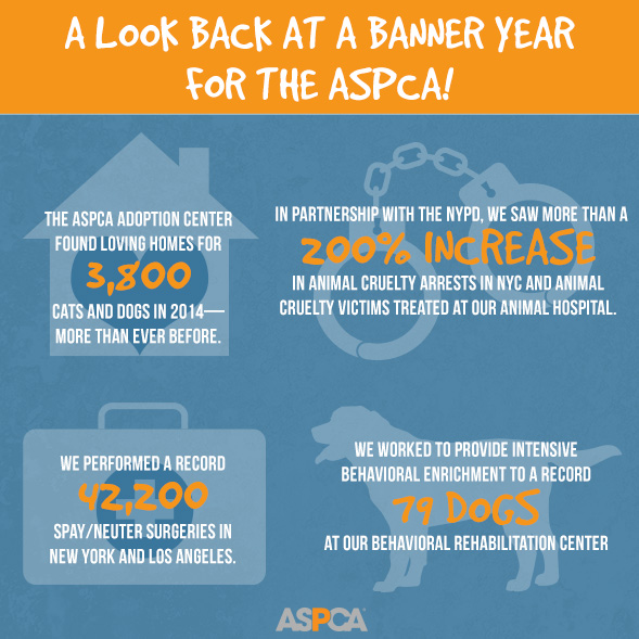The Results are in: 2014 was a Record-Breaking Year for the ASPCA