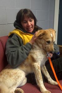 Cheryl Suydam, Rehabilitation Counselor at the ASPCA Behavioral Rehabilitation Center with dog