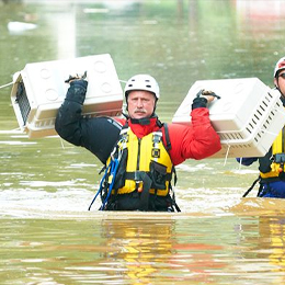Man carrying pet carriers through water