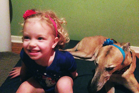 Young girl playing dress-up with pet greyhound