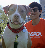 ASPCA staff standing next to happy pit bull