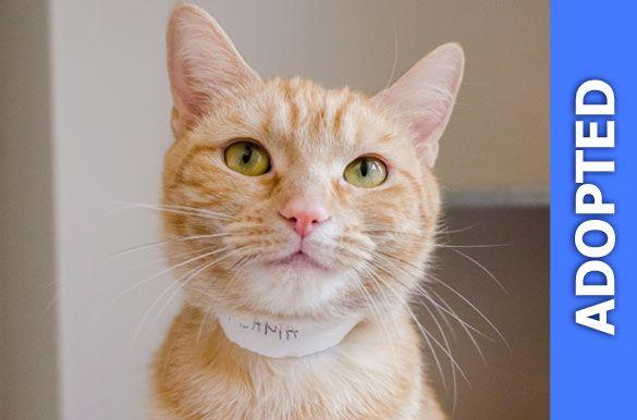 Amaranta was adopted!