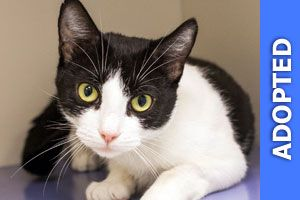 Elouise was adopted!