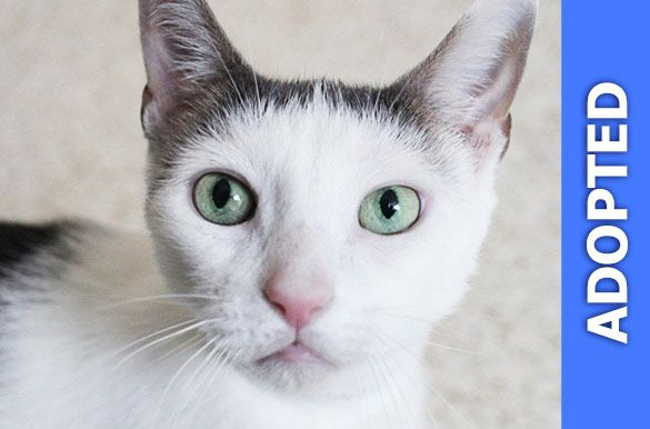 Giselle was adopted!