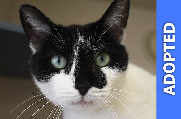Maria was adopted!