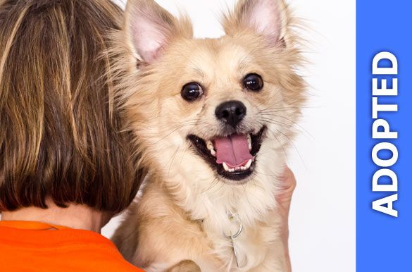Mello was adopted!