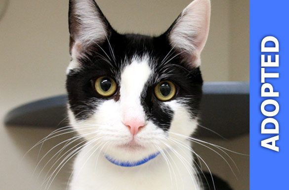 Morton was adopted!