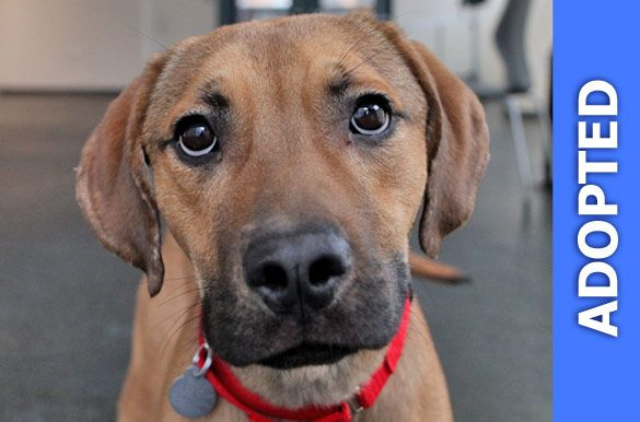 Omar was adopted!