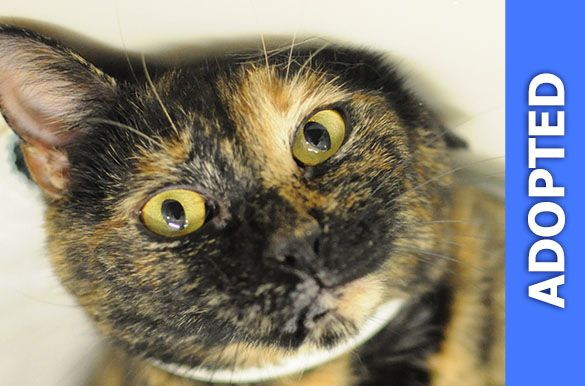 Pauline was adopted!