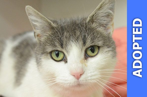 Singer was adopted!