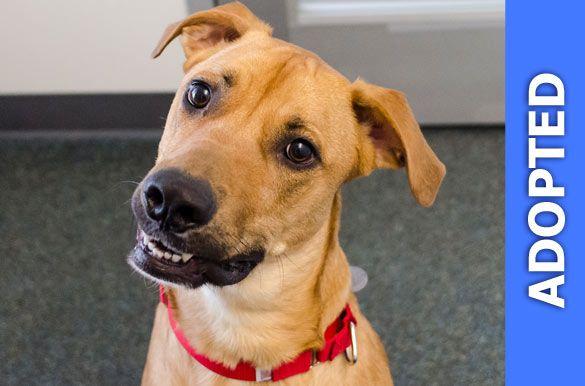 Sosa was adopted!