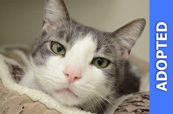 Thomas was adopted!