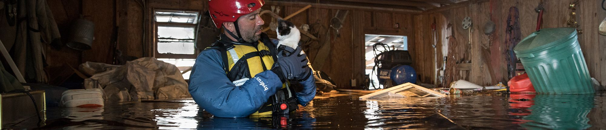 Man rescuing cat from flooded house