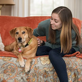 a woman on a couch with a dog