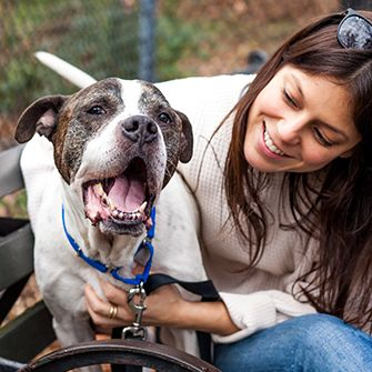 May is National Foster Care Month! We Hope You'll Consider Fostering a Shelter Pet