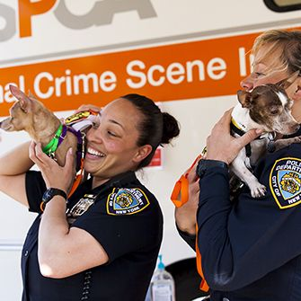 nypd officers holding dogs