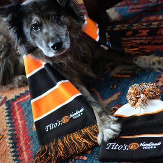 a dog with a Tito's vodka scarf and hat