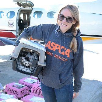 ASPCA volunteer transfer a cat in a carrier
