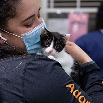 ASPCA staff with face mask holding a kitten