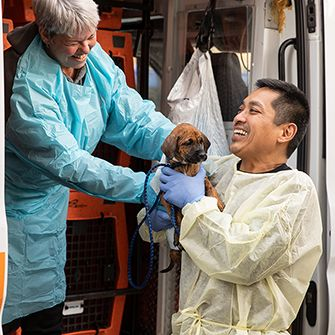 a puppy being transferred out of the transport