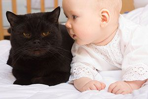 Baby and black cat hang out on blanket