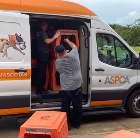 ASPCA Assists Local Shelters in Evacuating Homeless Animals in Path of Hurricane Ida