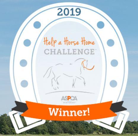 Help a horse home