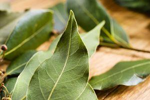 Image result for bay leaf tea 300 x 200