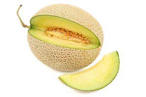 honeydew melon aspca