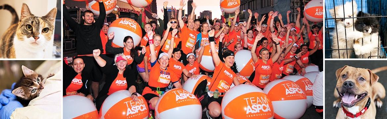 2015 Rock'n'Roll Los Angeles Halloween Half Marathon