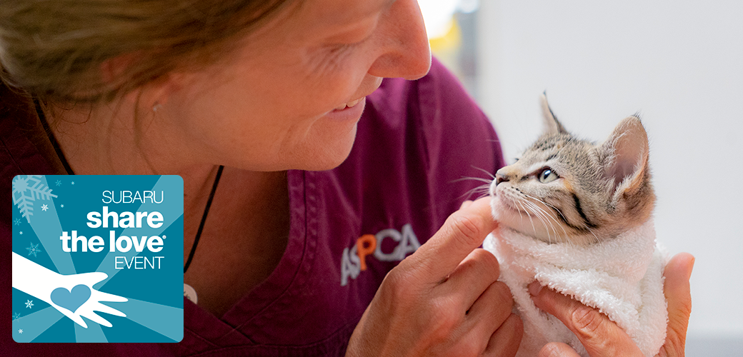 aspca staff member with a kitten