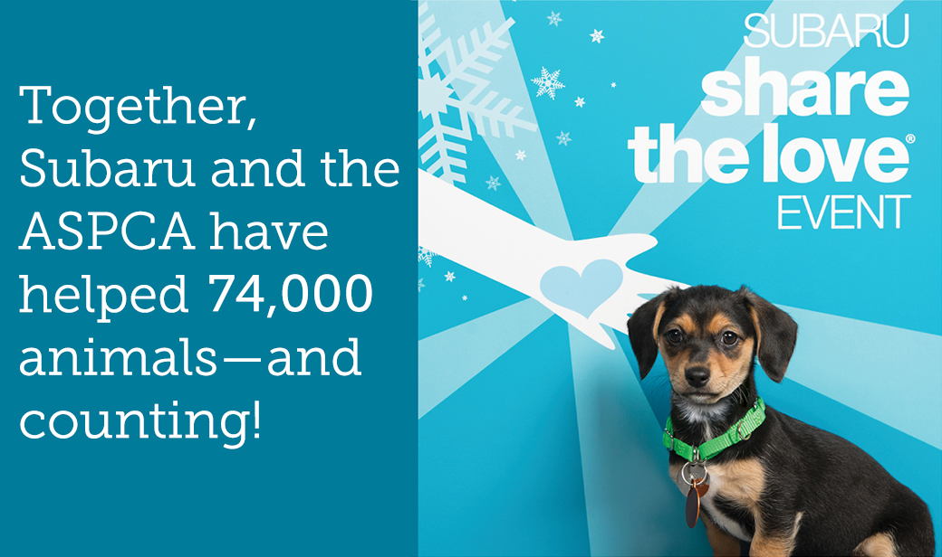 Together, Subaru and the ASPCA have helped 74,000 animals—and counting!