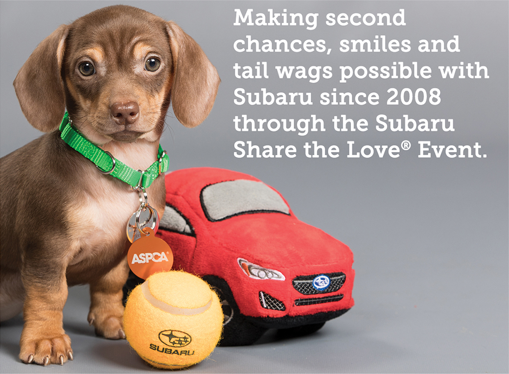 Making second chances, smiles and tail wags possible with Subaru since 2008 through the Subaru Share the Love ® Event.