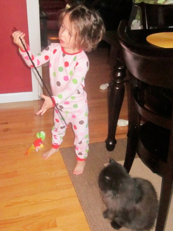 Little girl in pajamas standing next to cat