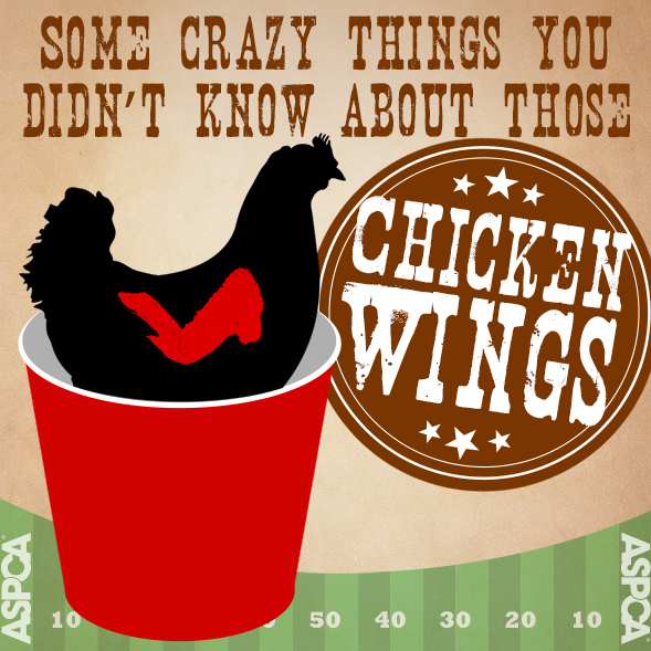 The Thing about Wings