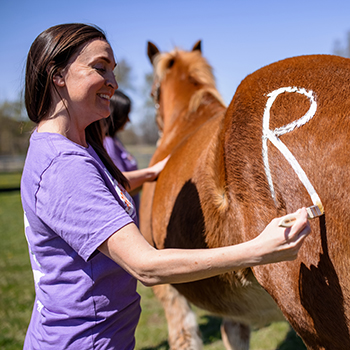 """Woman painting """"r"""" on brown horse"""