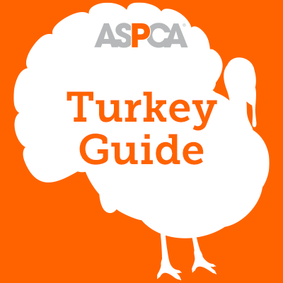 Turkey Label Guide