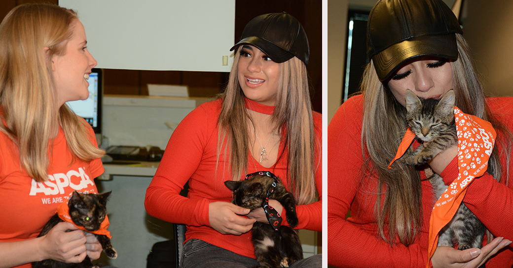 Left: Tina Reddington and Ally Brooke hold Maisy and Daisy. Right: Ally with Maisy.
